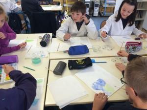 atelier aquarelle classe 10 (2)